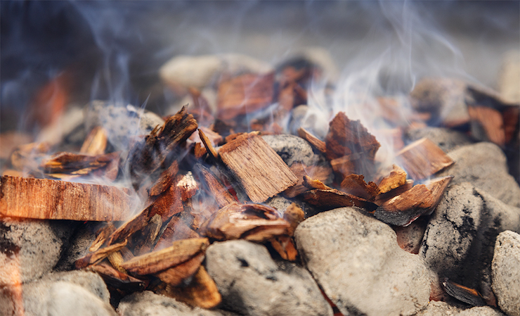 Best wood chips for smoking the money
