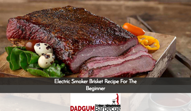 Electric Smoker Brisket Recipe For The Beginner