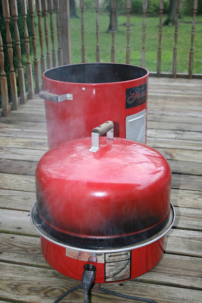 brinkmann gourmet electric smoker interior